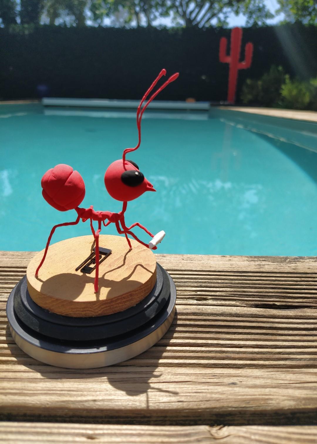 La fourmi rouge.